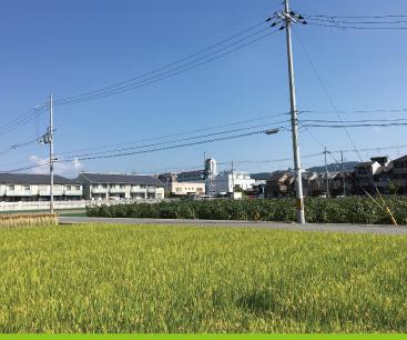 竹田/深草